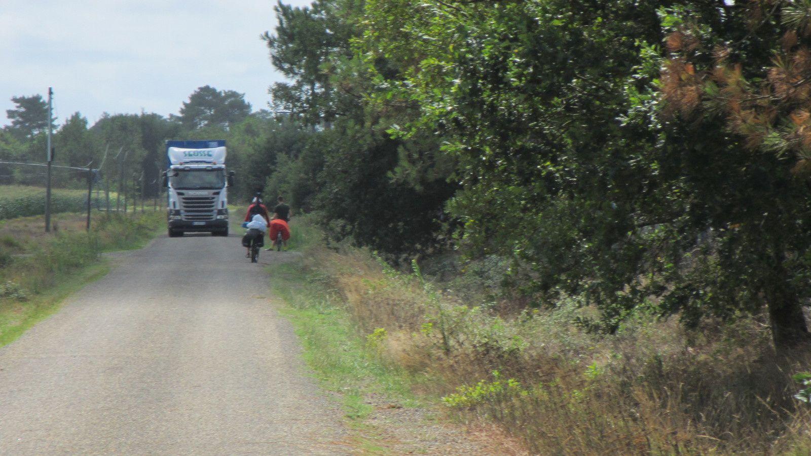 Attention aux poids lourds ! Dans les forêts landaises, la cohabitation est parfois difficile avec les camions de débardage.