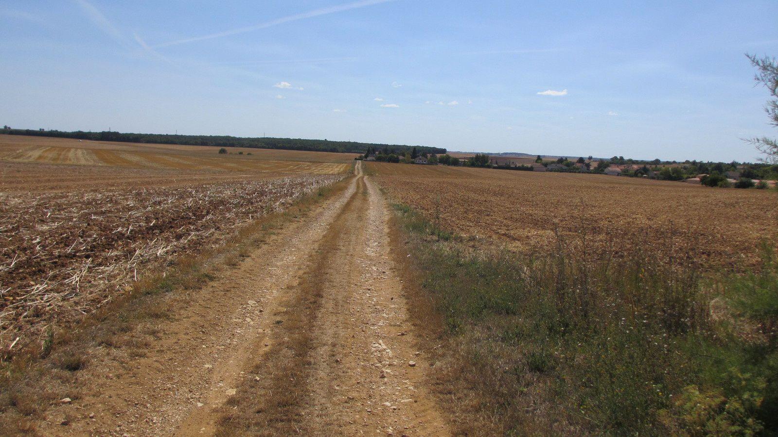 La voie romaine en arrivant sur Poitiers - le VTT y est fortement recommandé.