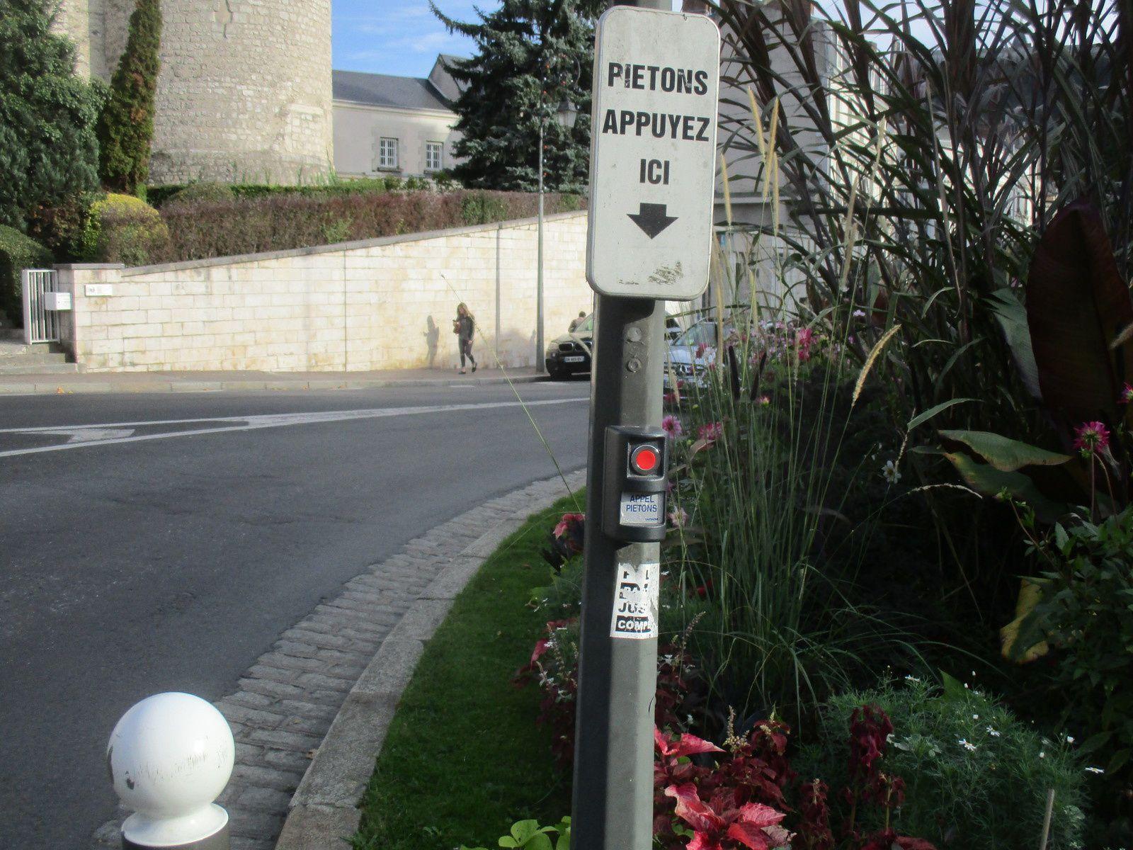 Blois, devant la Poste centre ville.  Il y a un problème de visibilité récurrent chaque automne, depuis des années... Le risque d'accident entre piéton et automobilsite est pour quand ?