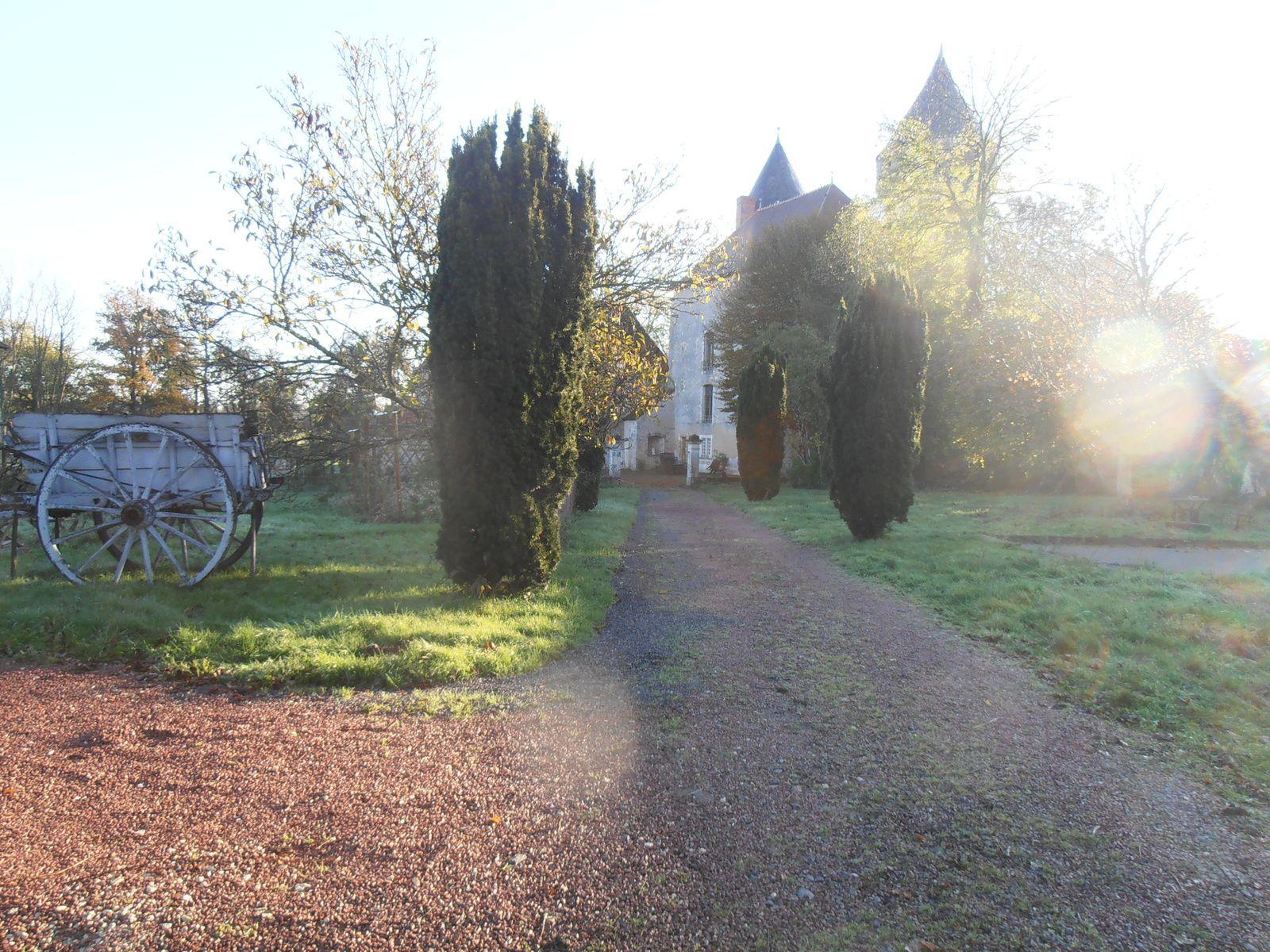 Images d'automne aux Gîtes de Celon