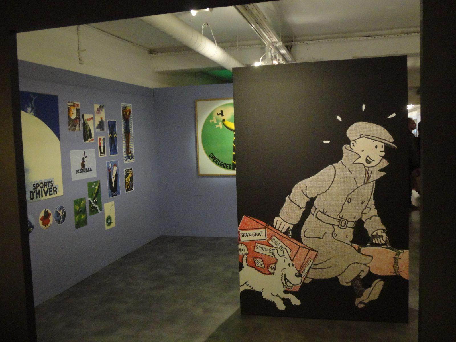 Photos - Exposition Tintin au Musée en herbe