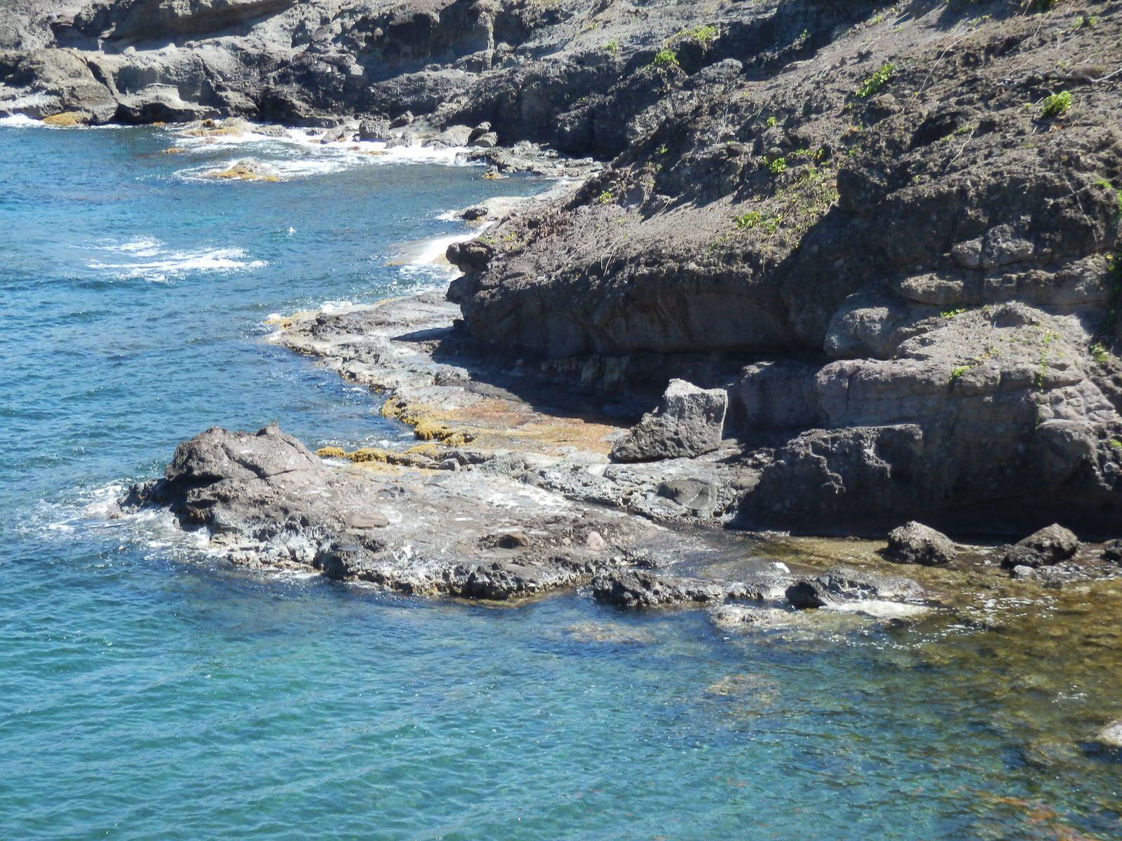 De retour de la très belle Martinique.