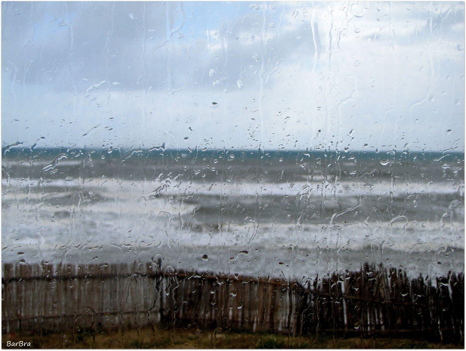 Oggi, 25 maggio 2013: il mare dalle dune di Sabaudia
