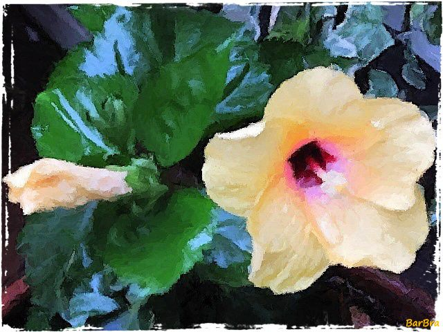 """"""" Le cime delle piante d'ibisco sono in fiore, sui monti spiccano i rossi petali. Presso il torrente la capanna tace: non c'è nessuno. A mille a mille i fiori spuntano e cadono."""