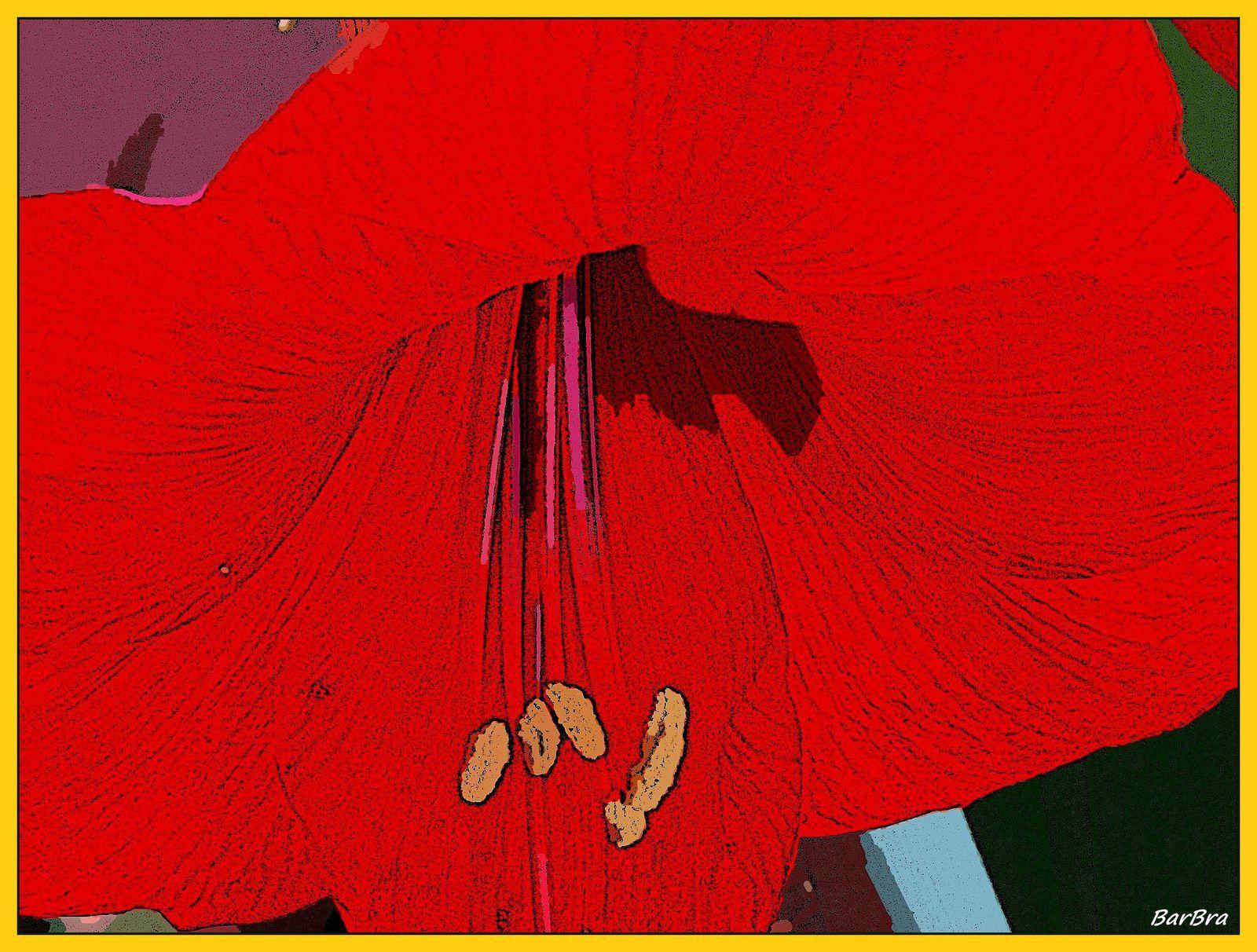 ... tu, Titiro, placido all'ombra, insegni ai boschi a riecheggiare del nome della bella Amarillide.