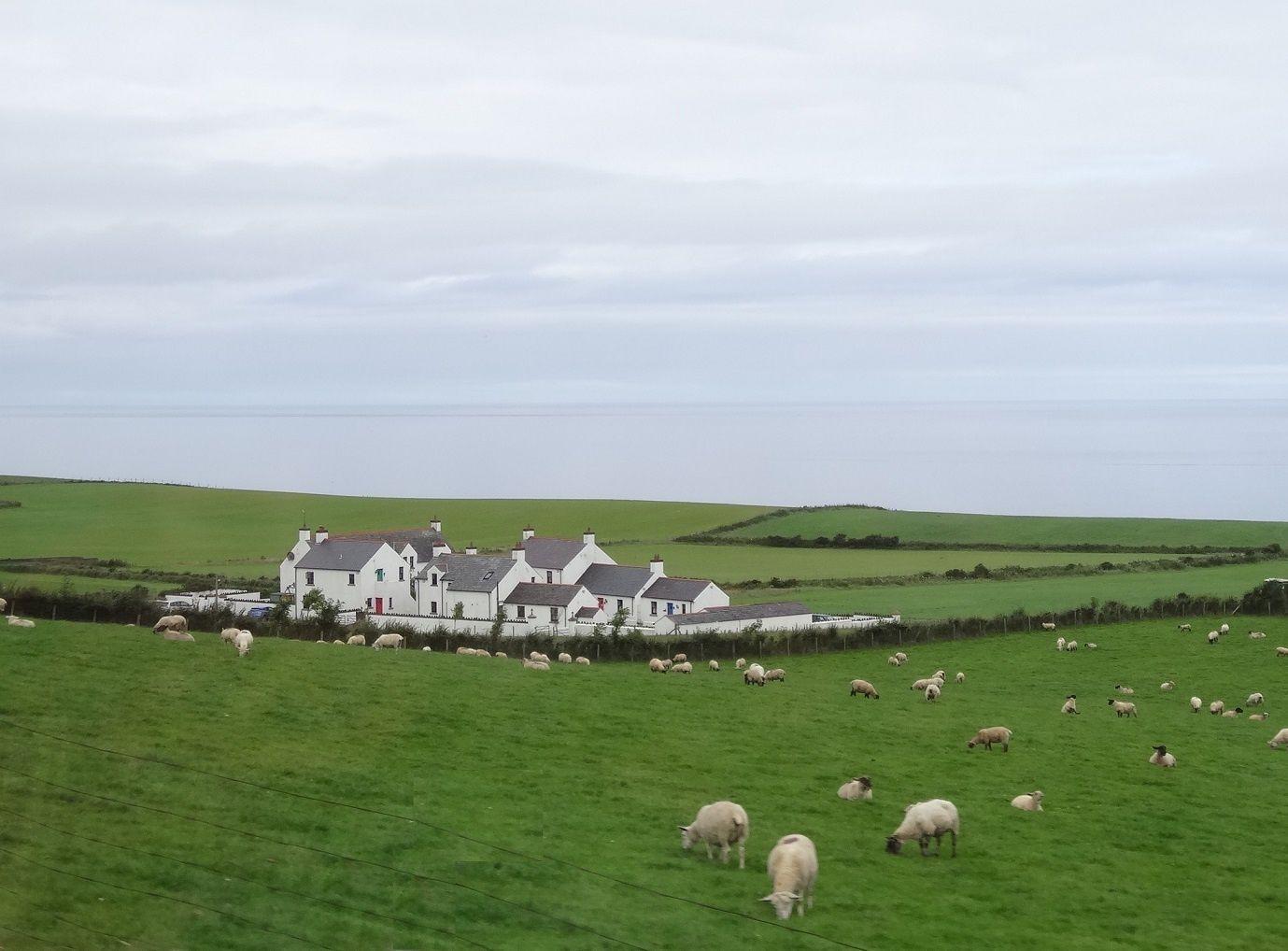 Antrim county