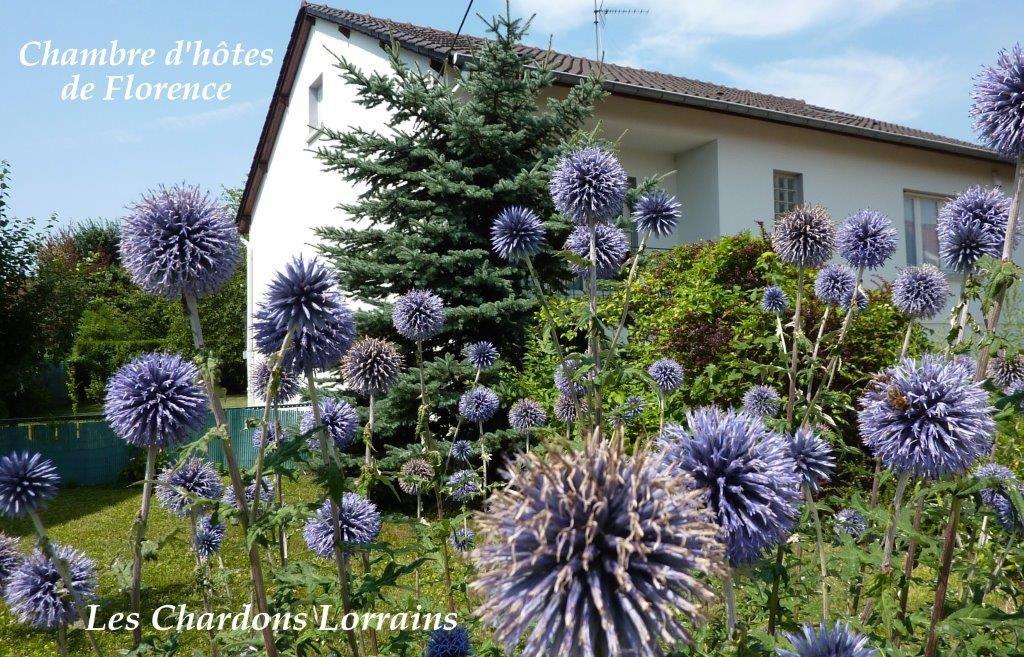 Jardin Chambre D H 244 Tes De Florence