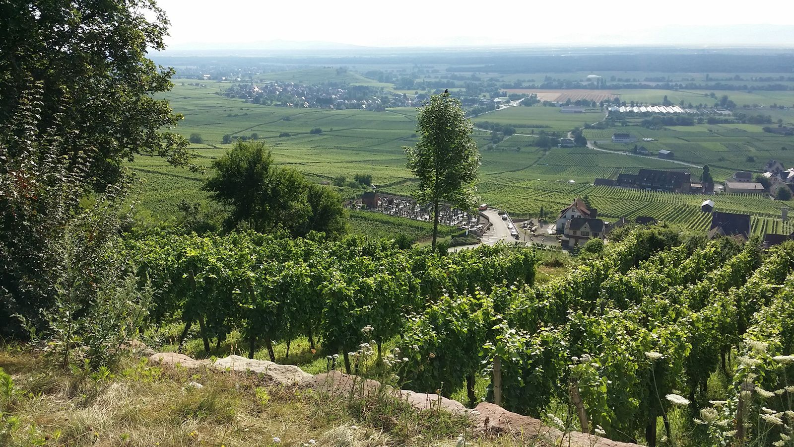 Gueberschwihr lors du retour vers la plaine d'Alsace