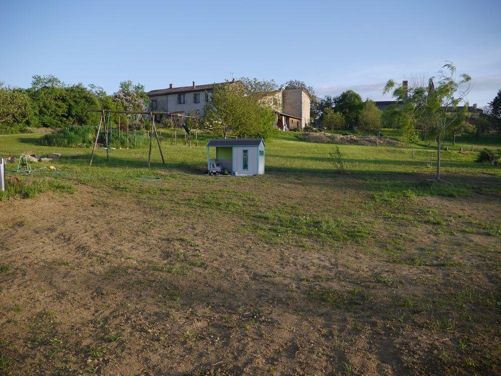 Photo bonus : vue sur l'herbe qui peine à pousser !! (mais pas les mauvaises herbes....)