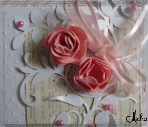 Zoom sur les roses