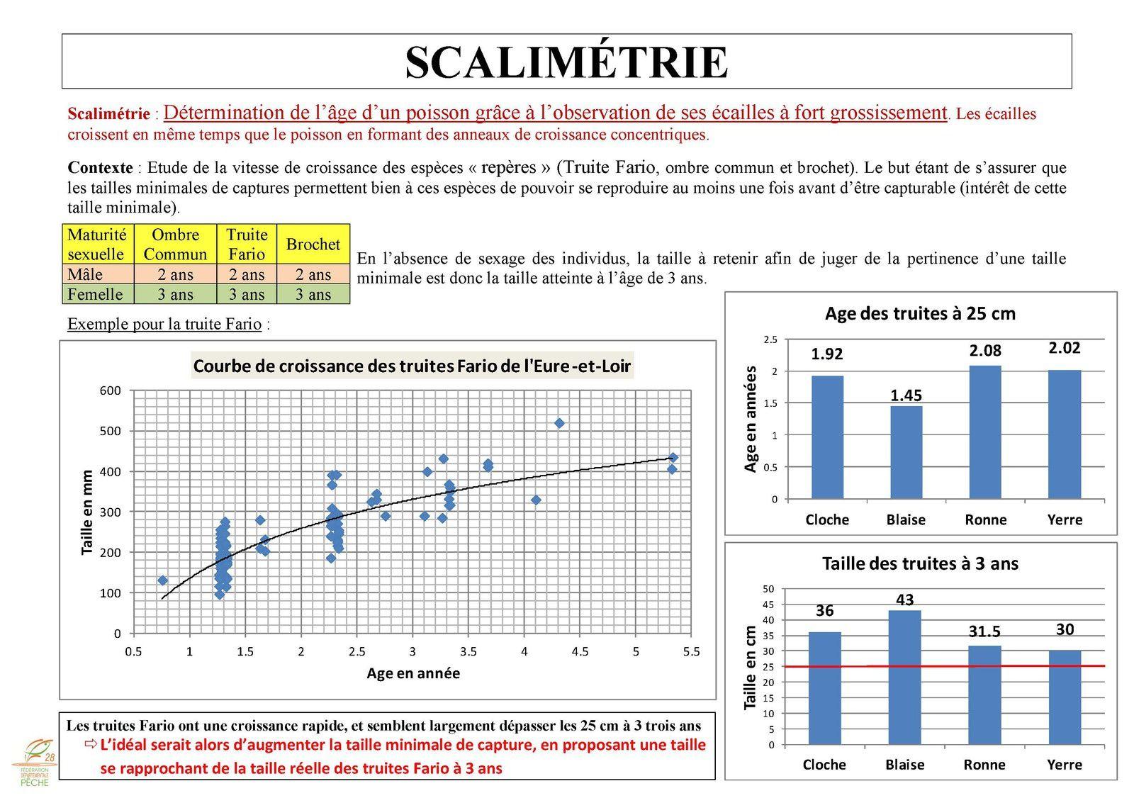 Etude scalimétrique dans le 28