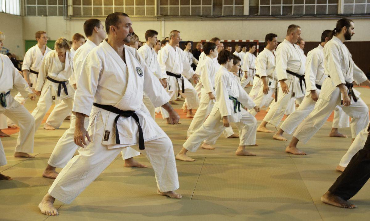 Le Cercle International de Karate-dô et arts martiaux traditionnel