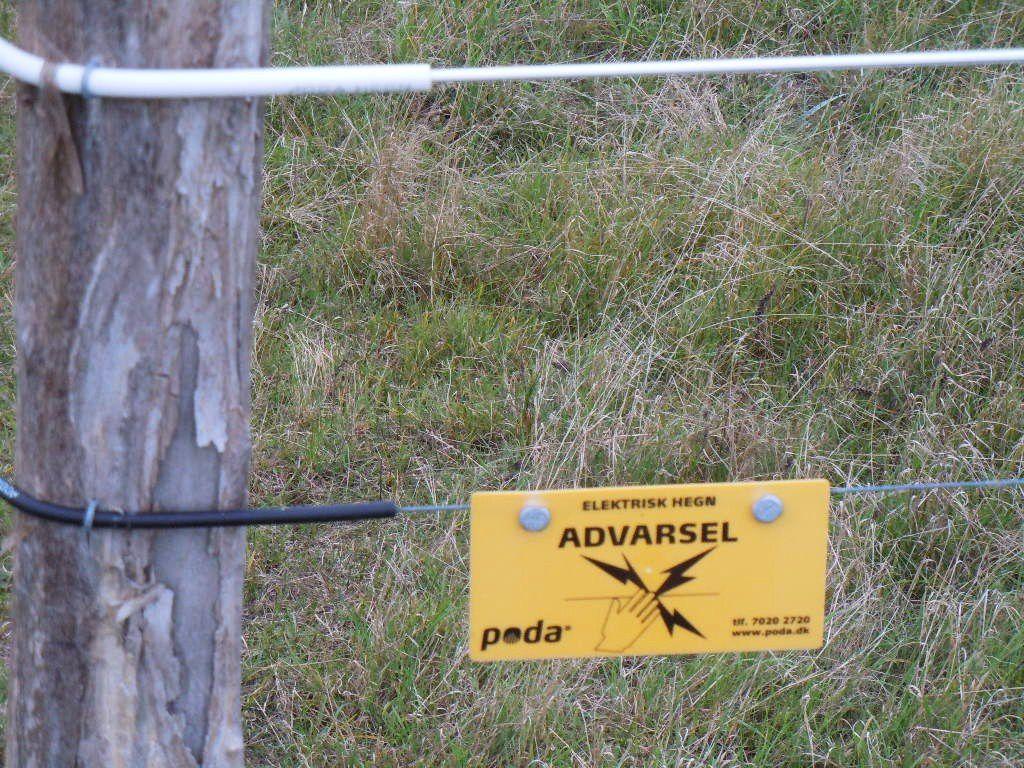 Une clôture électrique le long de la digue