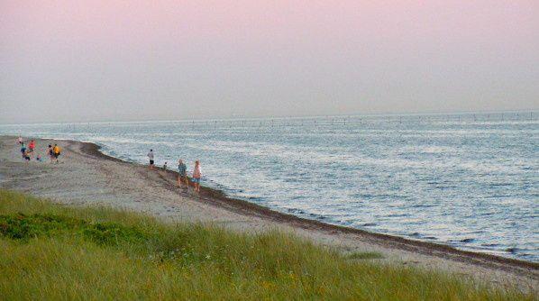 Notre petit paradis danois (7) Le Littoral