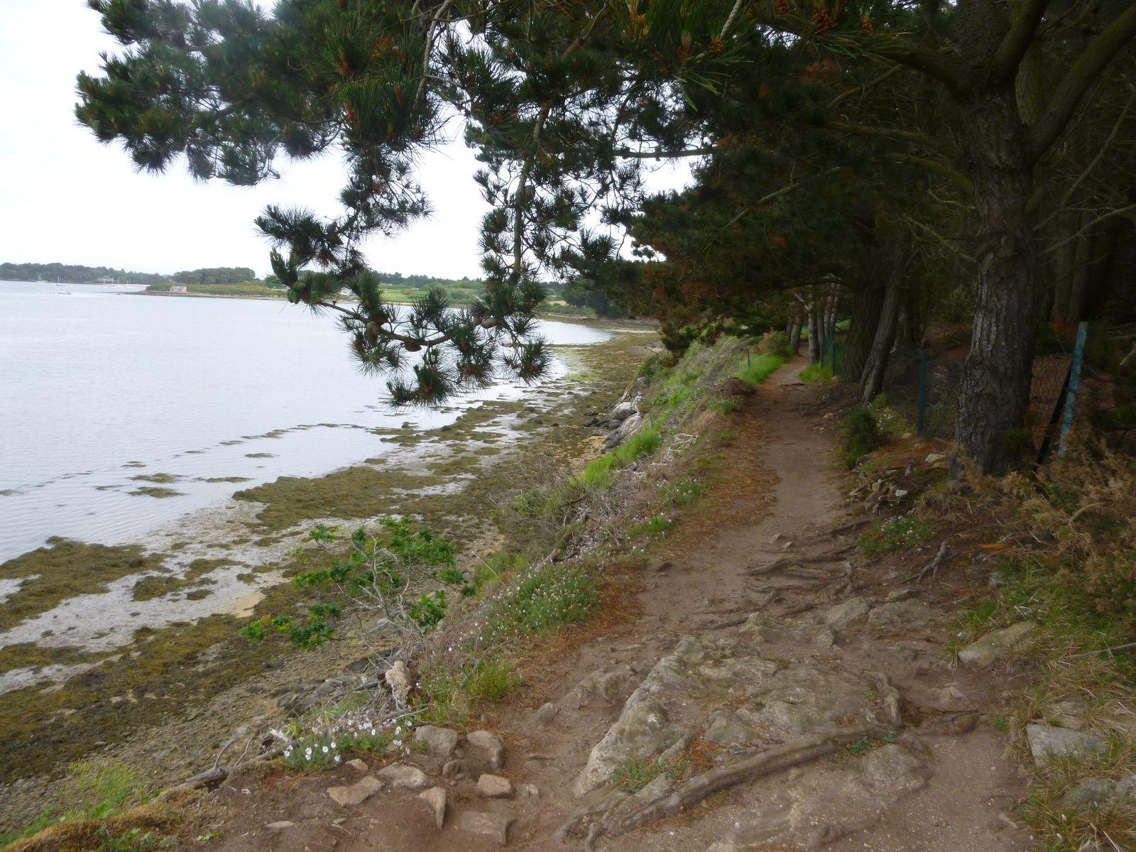 """le """"quadrille"""" au départ du Logeo (20/5) - la Pointe de l'Ours - Moulin à marées du Lindin - le sentier après la Pointe de Bernon -"""