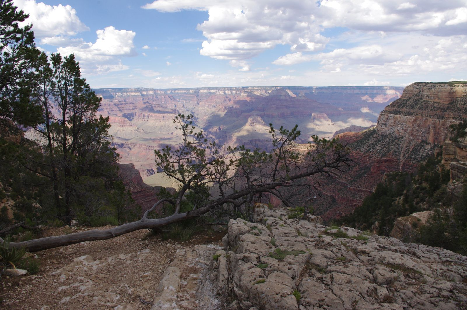 USA Road Trip - Jour 10/25 - Selligman - Grand Canyon National Park