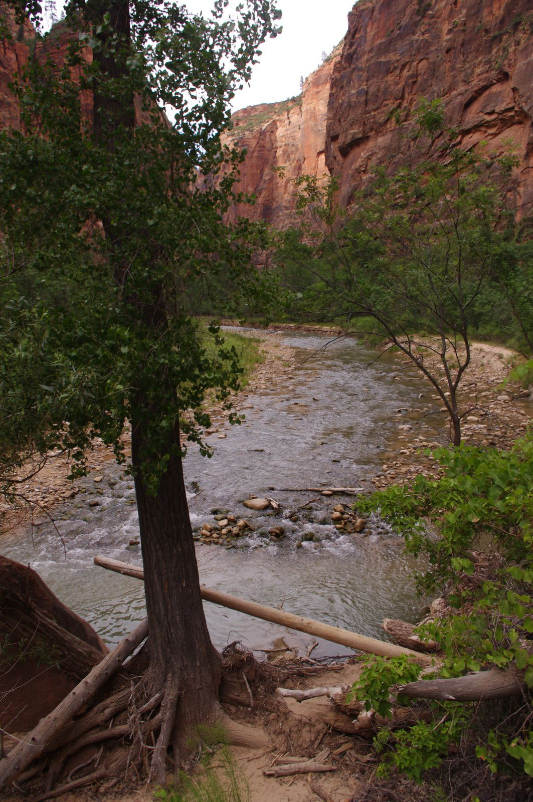 USA Road Trip - Jour 18/25 - Bryce Canyon National Park - Zion National Park