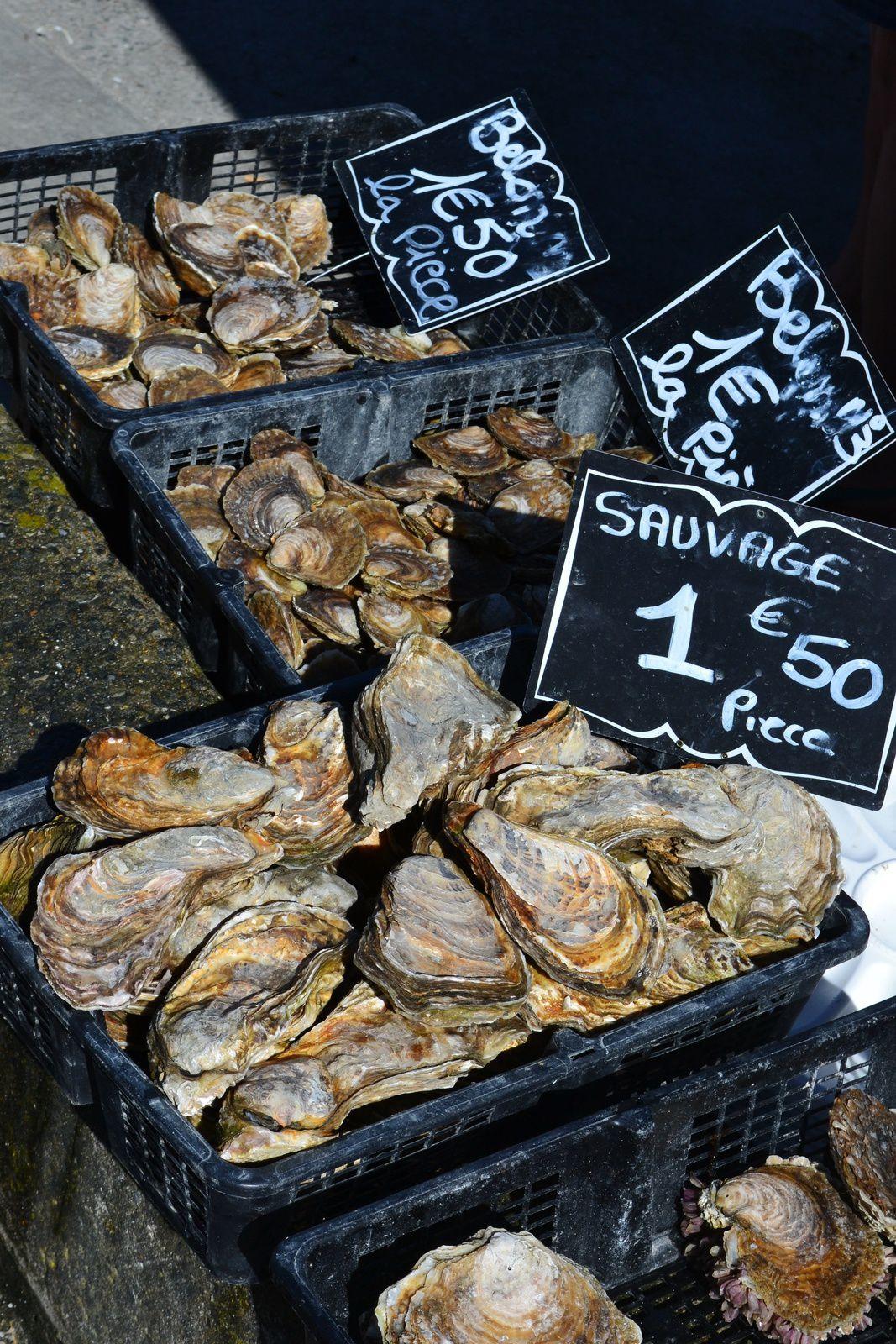 Cancale et son port aux huîtres.