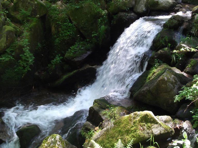 La cascade de la Serva que nous traversons par la pont fait d'un tronc d'arbre coupé en deux