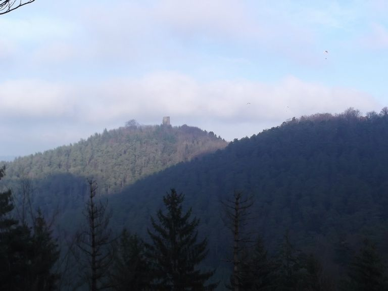 vue sur le Grand Geroldseck, le ciel est constellée de parapentistes