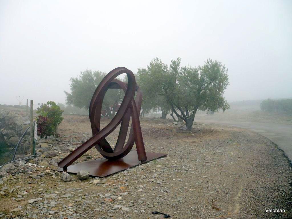 Les alentours du domaine avec ses oliviers.