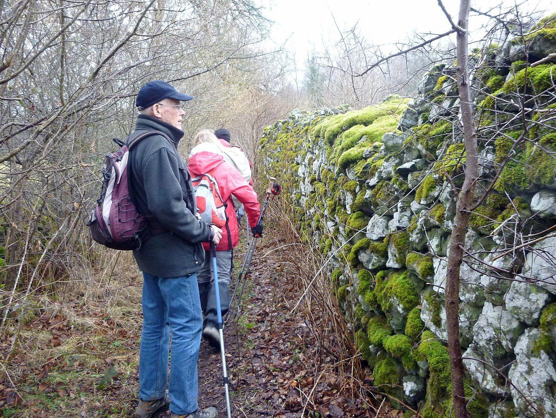 Henri admire ce beau mur moussu en pierres sèches.