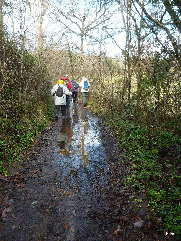 Le chemin est très boueux, heureusement que nous avons de bonnes chaussures avec des semelles, hum! je ne vise personne!