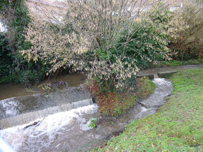 Village d'eau: une fontaine et un cours d'eau, avant il y avait une fontaine pétrifiante.