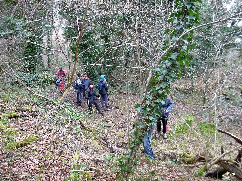 Aïe, aïe, aïe!, nous sommes bloqués par des chutes d'arbres. Un autochtone qui coupait du bois à proximité nous dit que nous pouvons passer, que c'est difficile sur 20 m. Bon! on y va
