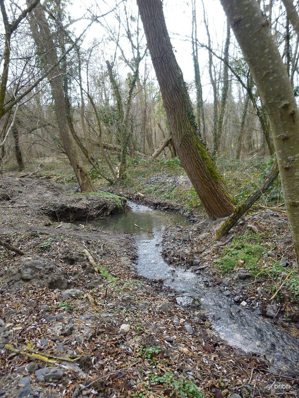 Nous suivons souvent des ruisseaux, dans ce coin il y a: le Mirabel et le Sigadoux.