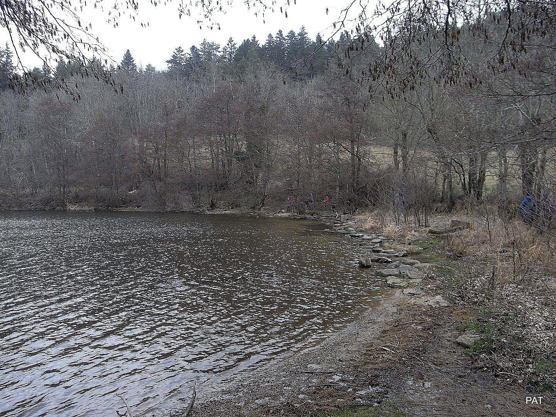 Ils arrivent au bout du lac.