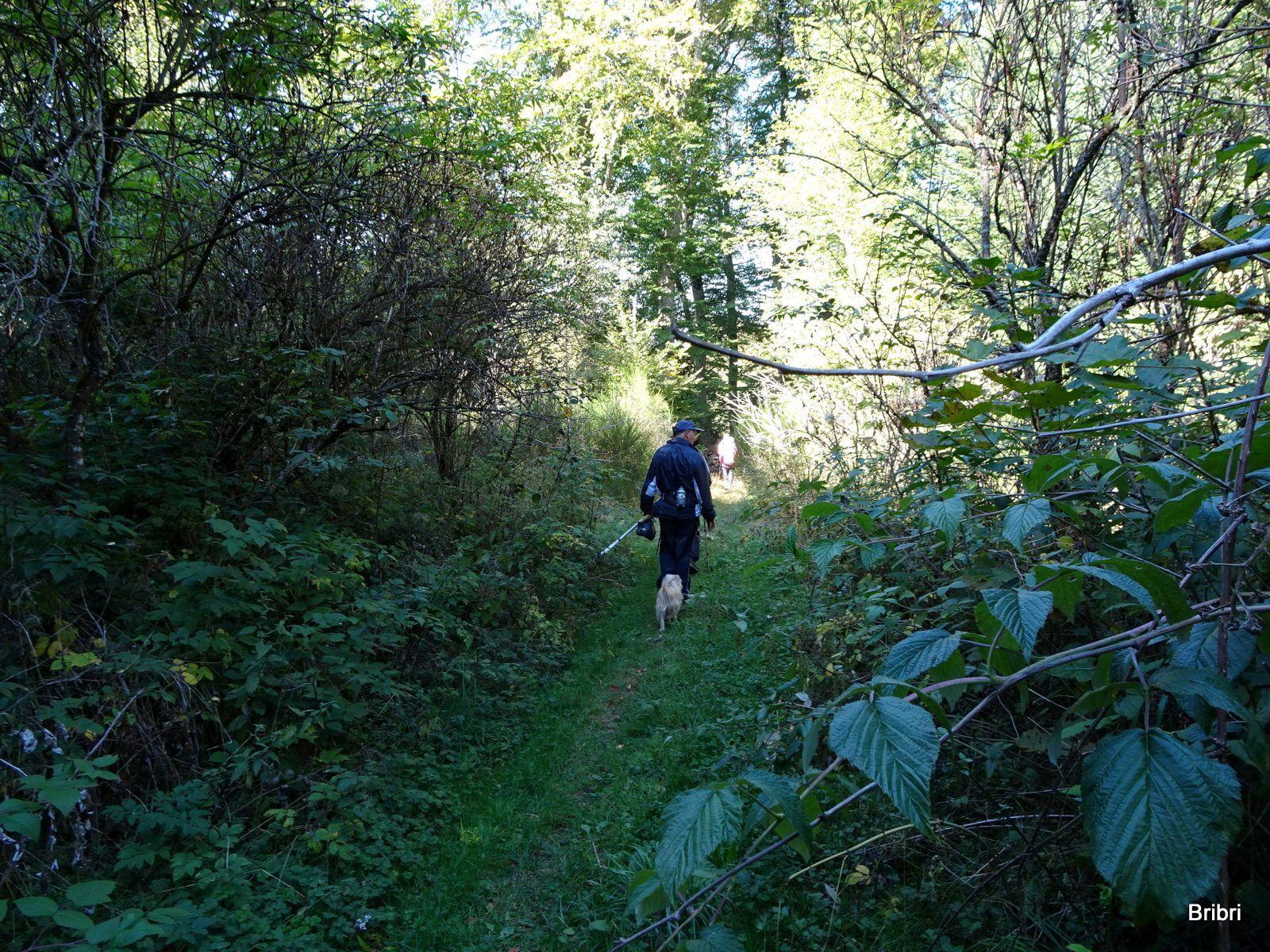 Nous voici de nouveau à couvert, derrière José cherche s'il y a des champignons !