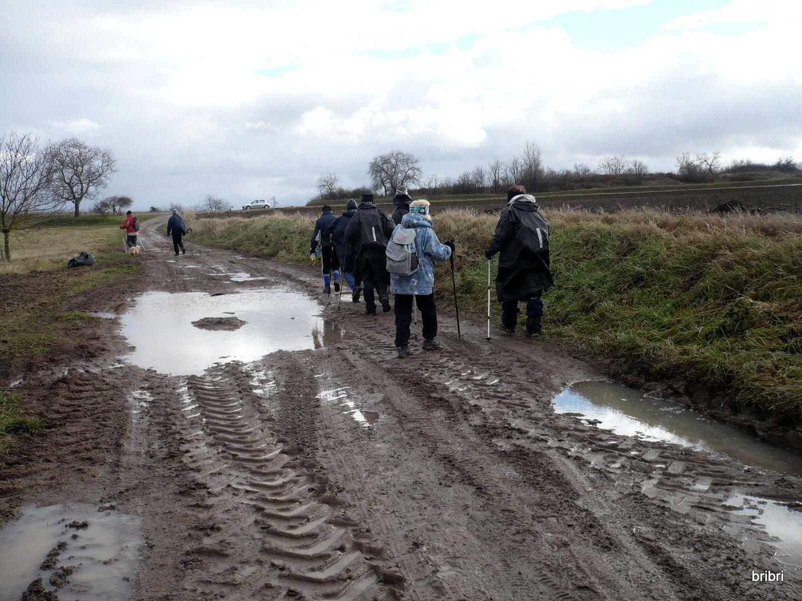 Chemins très boueux, nous passons le Sardon.