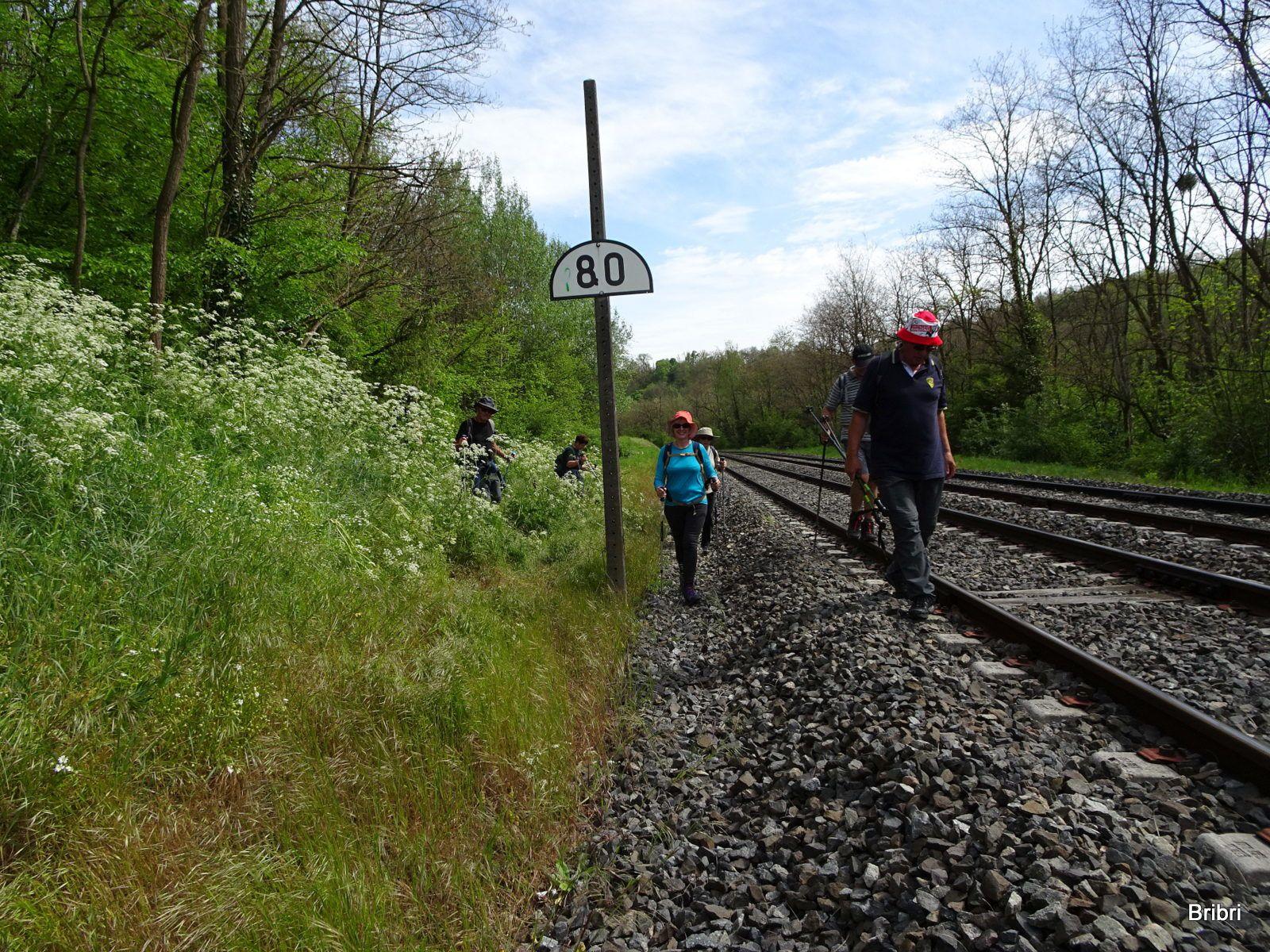 Demi-tour il est préférable de suivre la voie sur quelques mètres. C'est sur ces cailloux que je vais choir et avoir mal au genou plusieurs jours. Heureusement pas de train durant notre traversée !