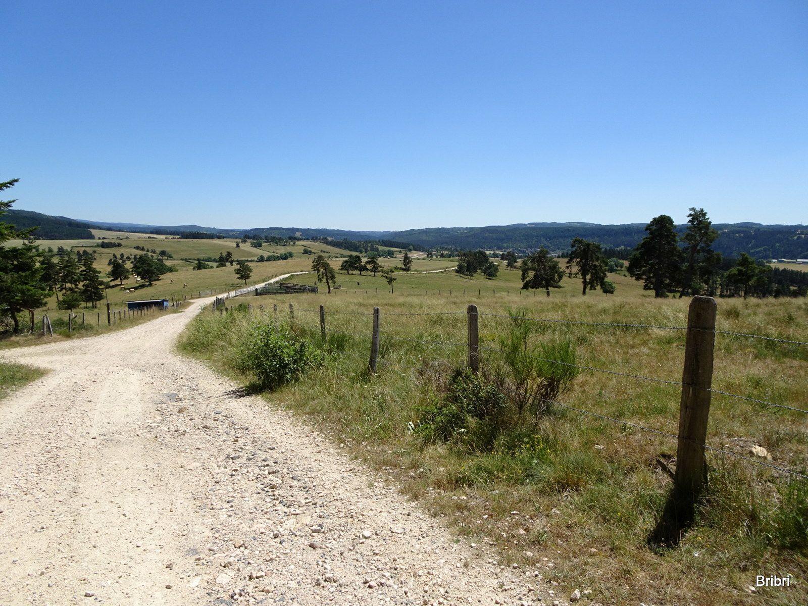 De très beaux chemins bien balisés.