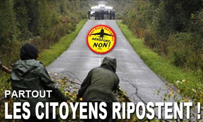 Année 2014, année cruciale pour Notre-Dame-des-Landes et les utopies concrètes.