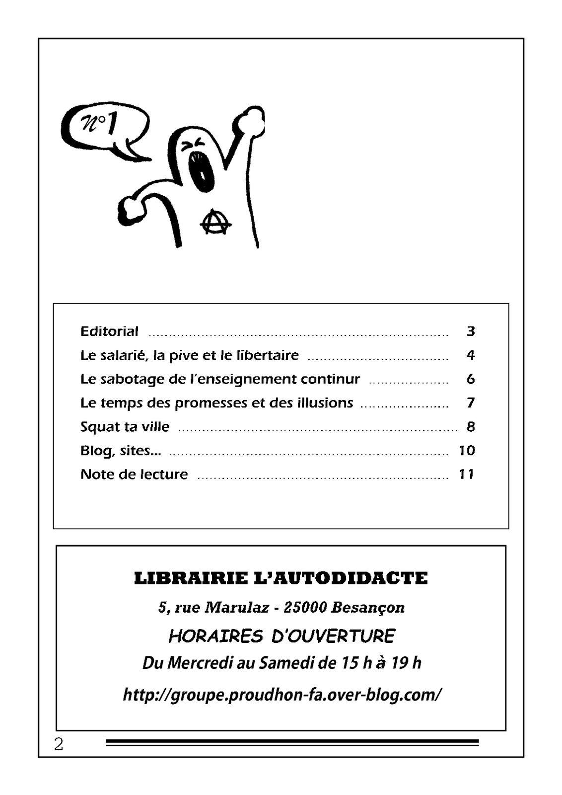 Drapeau noir n° 1