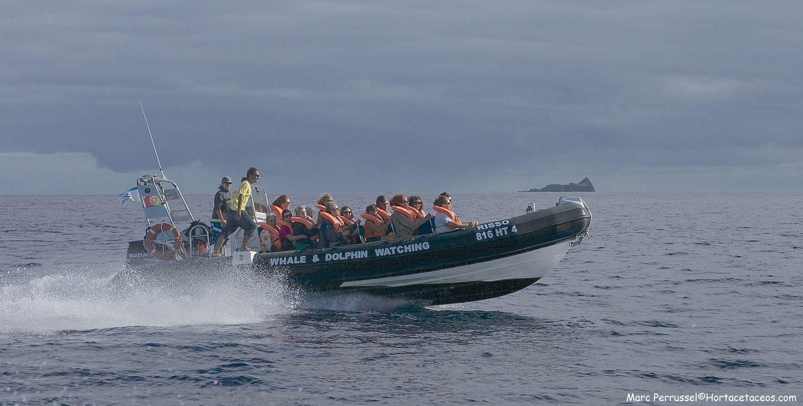 Risso, notre super bateau.