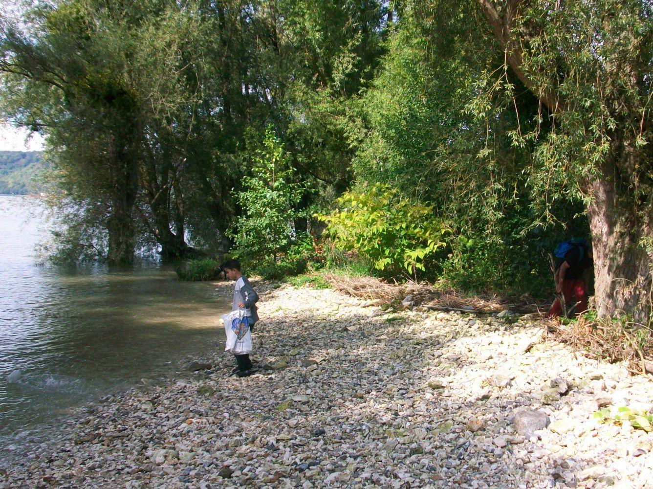 Randonnée pédestre en bord de Seine normande de Poses à l'estuaire - étape 13 - St Martin-de-Boscherville à Hénouville  - rive droite - Seine Maritime - 2008-2015