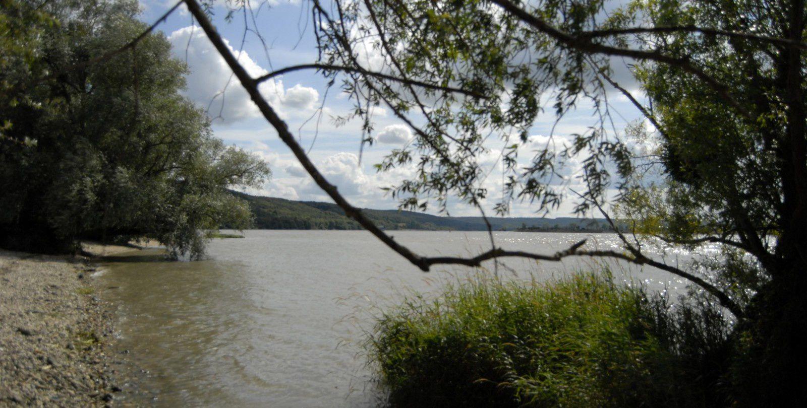 bord de Seine de la rive gauche à la Vacquerie
