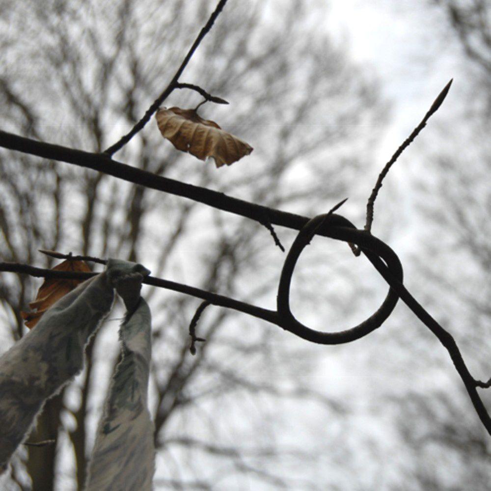 autre nœud dans les arbres au pourtour de la chapelle St Maur