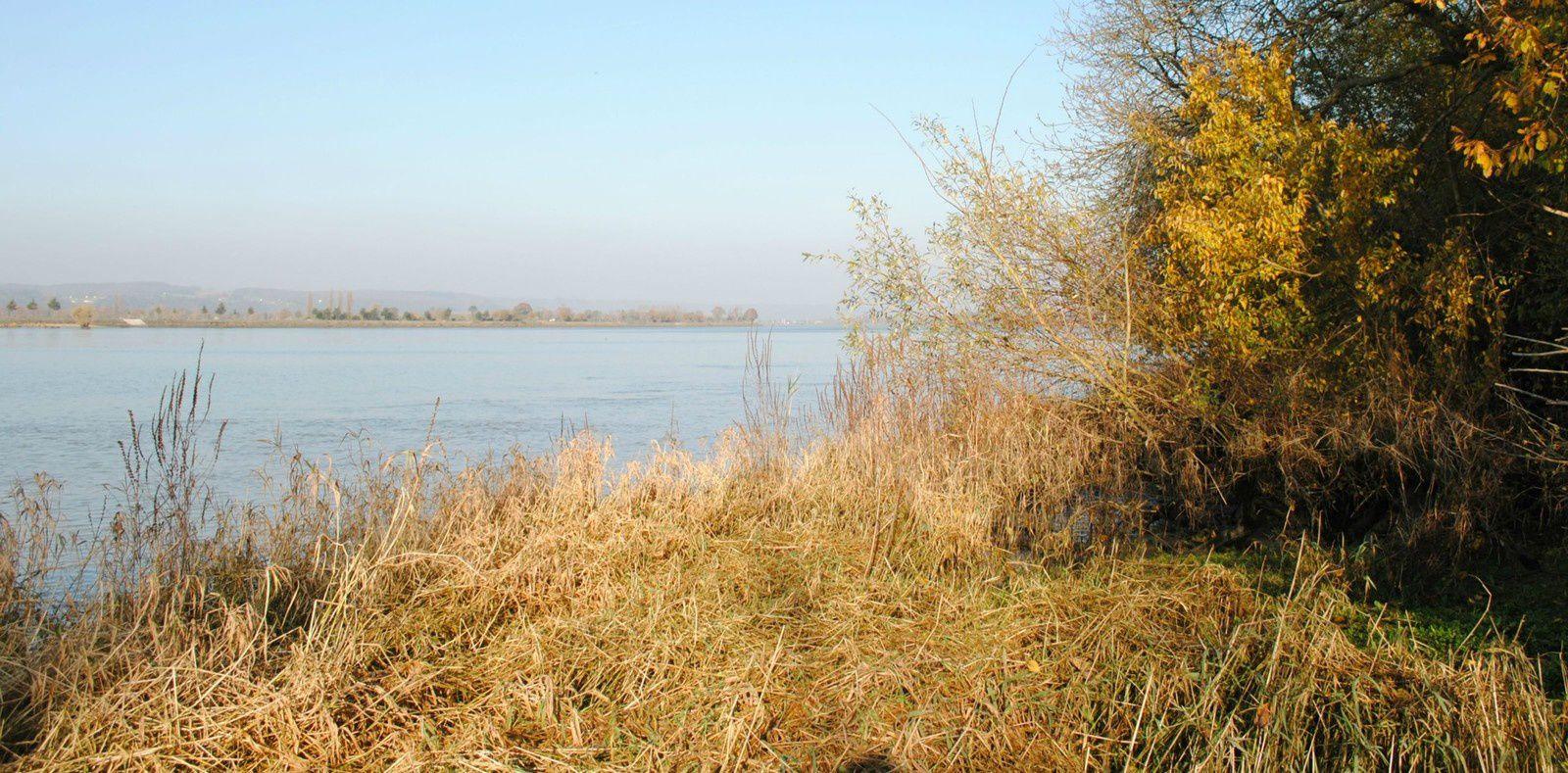 la Seine près d'Aizier