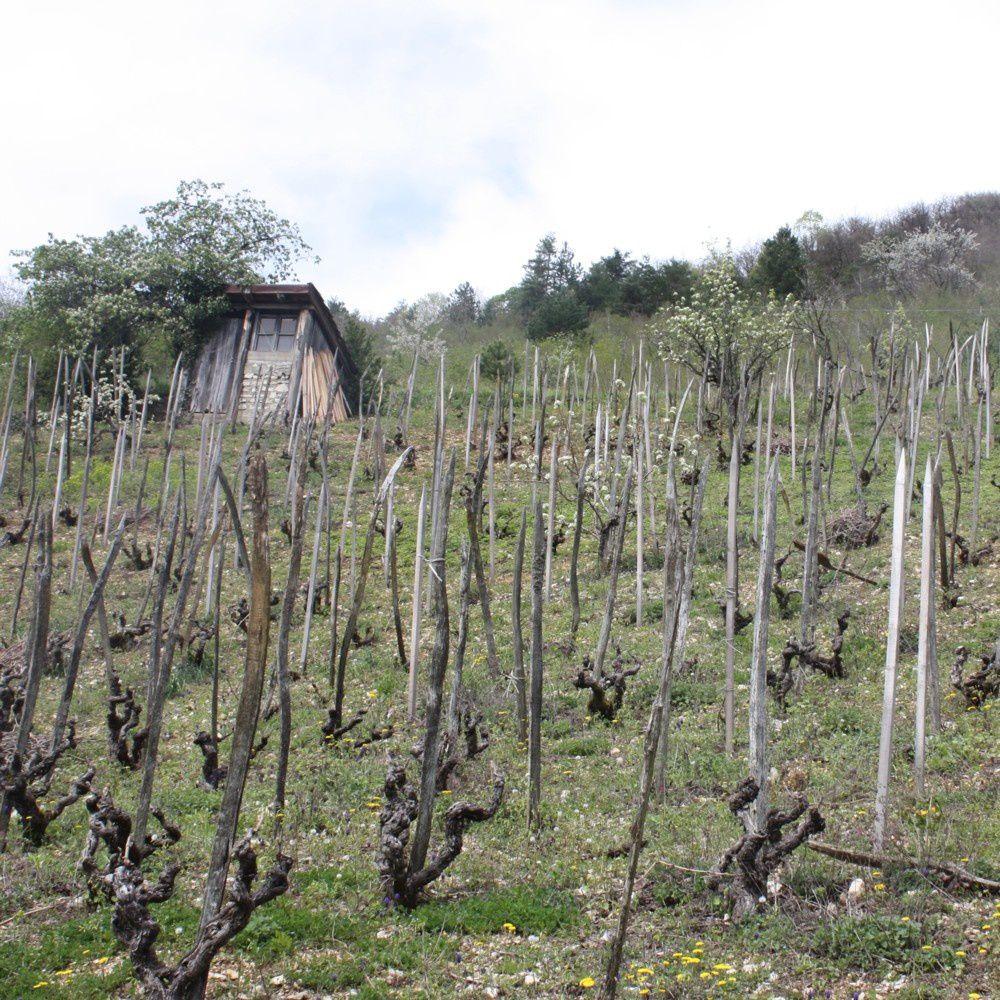 le grangeon, cabane de vigne © levaillant 2016