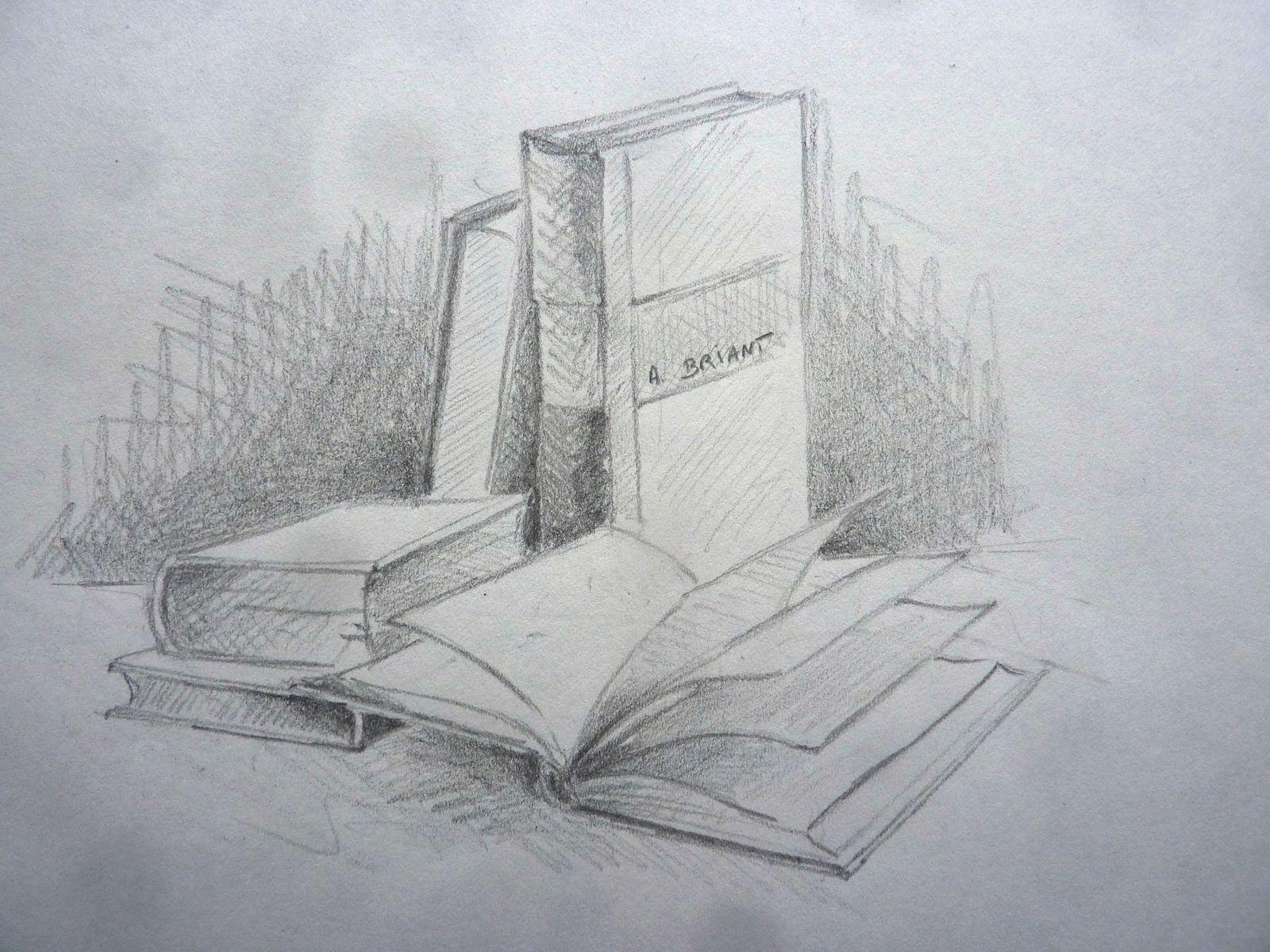 Cours Dessiner Un Livre Illustration Alain Briant Galerie