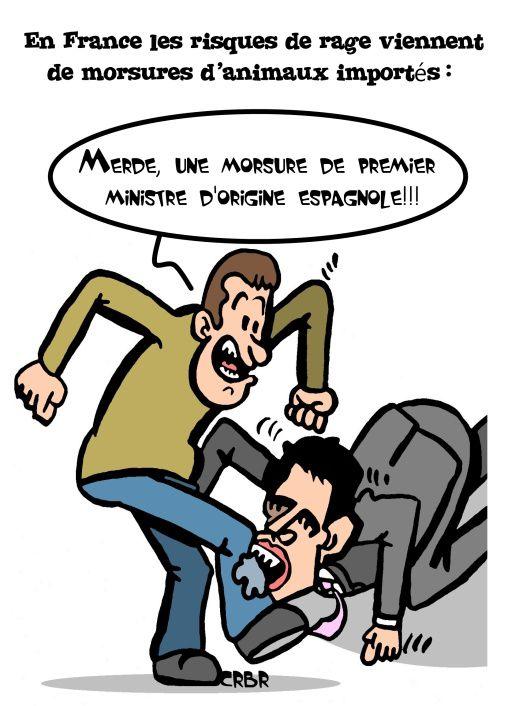 En France les risques de rage viennent de morsures d'animaux importés...