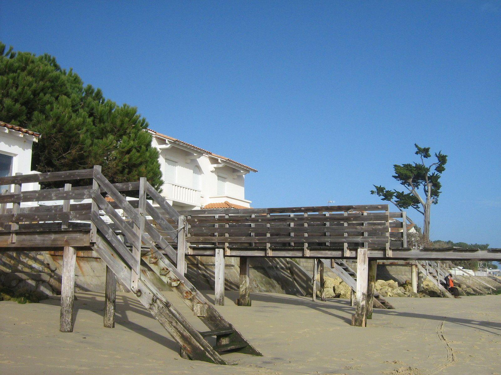 Désormais, dans un coin de mon coeur, a pris place une longue langue de sable habillée de pins : le Cap Ferret