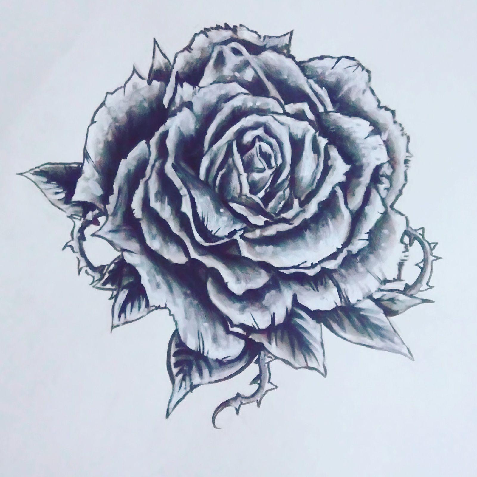 Rose Tatouage Dessin Tuer Auf