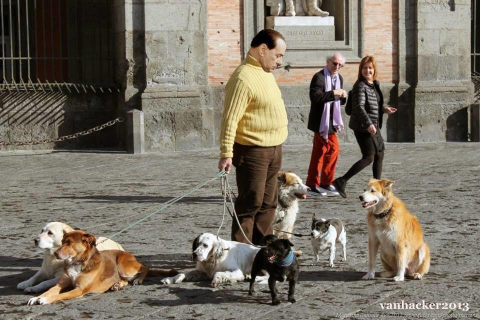 """Franco Coppi, l'avvocato di  Berlusconi, annuncia la richiesta per l'affidamento in prova ai  Servizi sociali per Berlusconi. Lo dice con una certa cautela, d'obbligo, visto il margine di imprevedibilità che un cliente come Berlusconi riserva sempre: «Se non ci saranno cambi di indirizzo, entro la prossima settimana depositeremo la richiesta per un eventuale affidamento in prova ai servizi sociali per Silvio Berlusconi».  La scadenza per la richiesta si avvicina ed il tempo sta quasi per scadere, il 15 ottobre sarà l'ultimo giorno utile. L'unica cosa che sembra scontata è che il Cavaliere chieda di essere affidato a una struttura della Capitale, dal momento che è recente il cambio di residenza a Palazzo Grazioli. Così, nell'eventuale concessione della misura alternativa da parte del Tribunale di sorveglianza di Milano, sarebbe un magistrato della Capitale a """"seguire"""" il suo reinserimento."""
