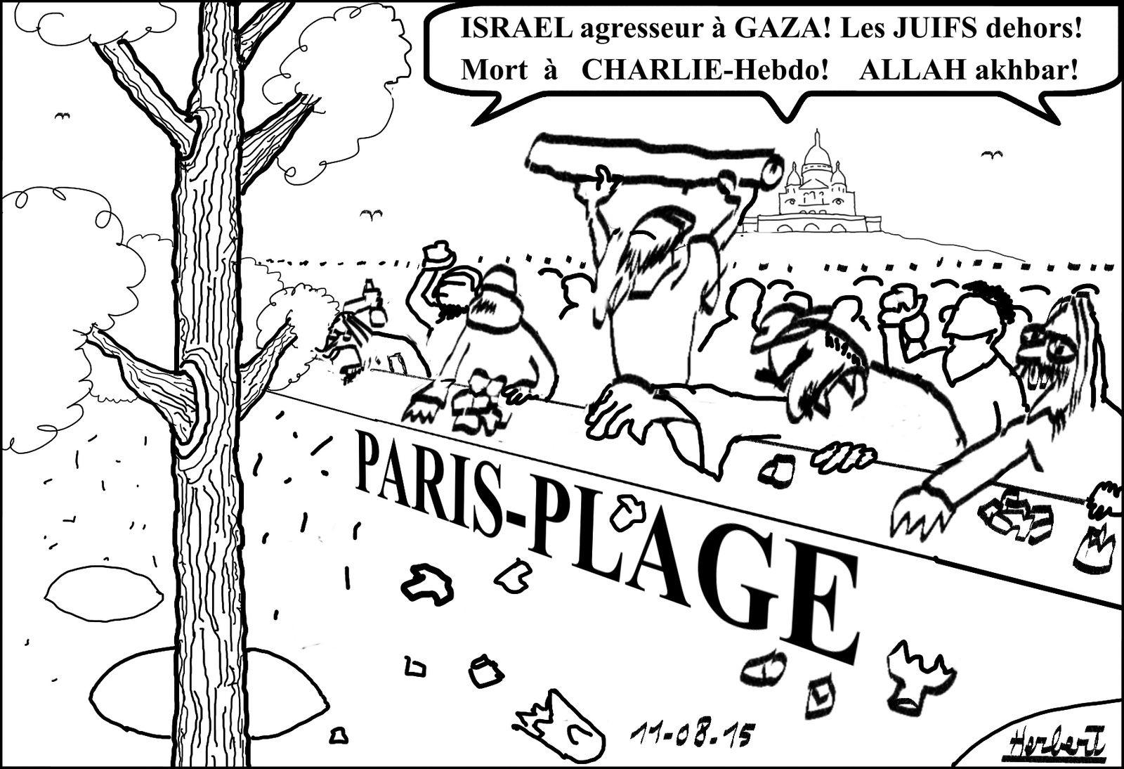 Paris-plage, hurlements islamo-gauchos