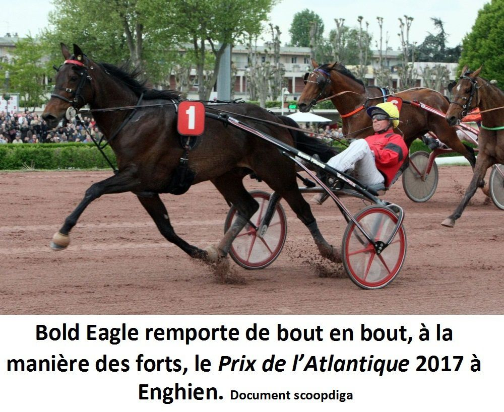 vente yearling caen 2017